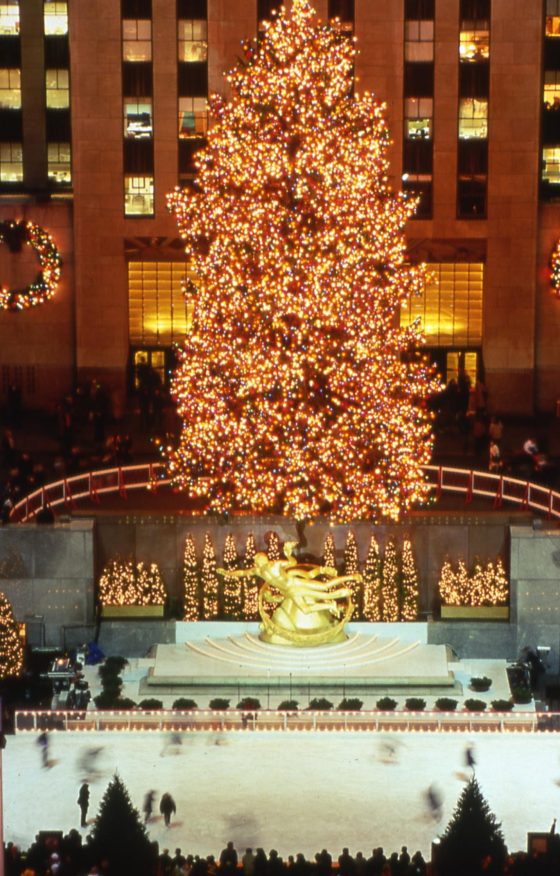 The 1998 Rockefeller Center Christmas Tree | Lauren Lanphear ...