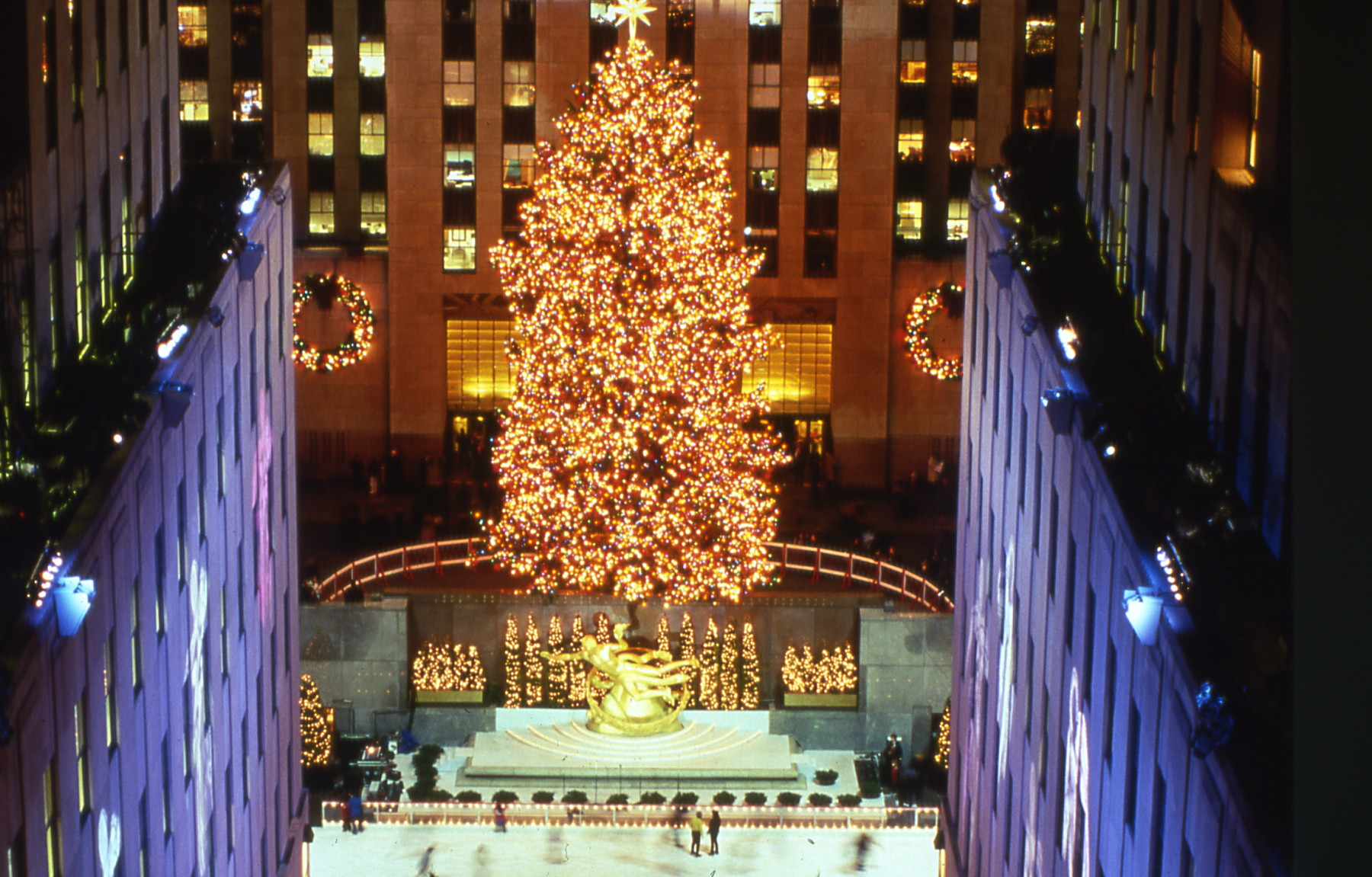 The 1998 Rockefeller Center Christmas Tree | Lauren ...